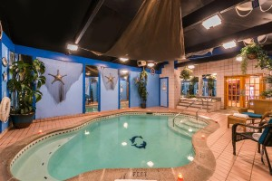 Inn of The Dove Bensalem: Dove Swimming Pool Suite